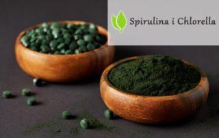 Algi Chlorella i Spirulina. Rozdział 5. Niedożywienie na świecie.