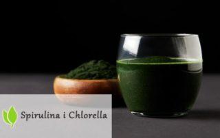 Algi Chlorella i Spirulina. Rozdział 11. Niskowęglowodanowe diety.