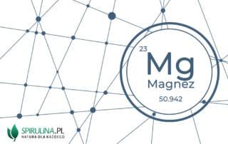Magnez - niezbędny dla każdej komórki organizmu