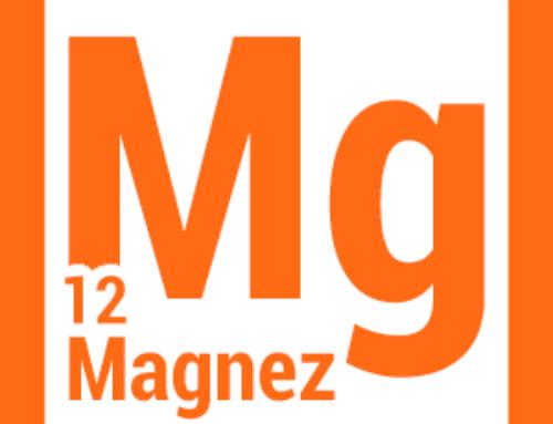 Magnez – niezbędny dla każdej komórki organizmu