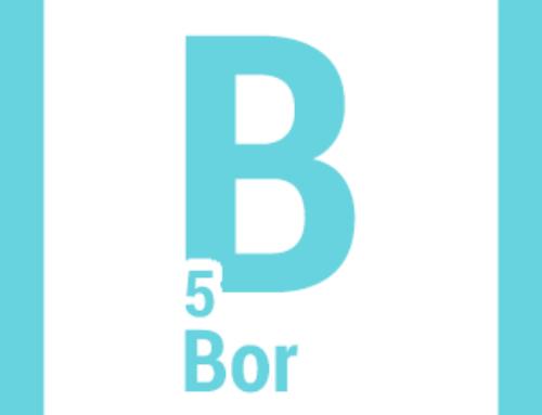 Bor – ekspert od gospodarki wapniowej organizmu