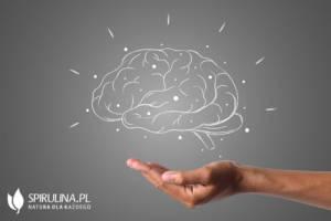 Cholina - wsparcie dla mózgu
