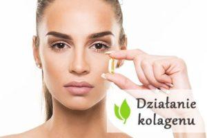 Działanie kolagenu