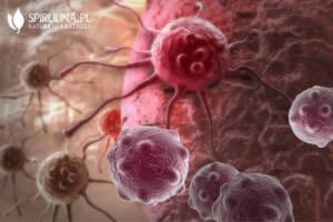 Czy Spirulina może zmniejszać ryzyko wystąpienia nowotworów?