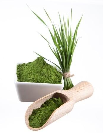 zielony jęczmień a tarczyca