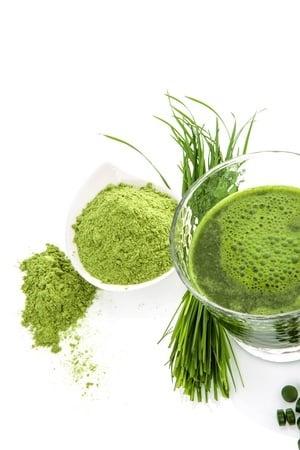 Zielony jęczmień – na co uważać, czytając oferty