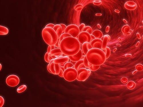 Spirulina a anemia