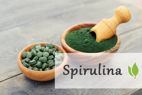 Spirulina – wszechstronna alga