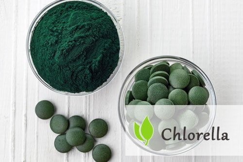 Chlorella - właściwości i opinie
