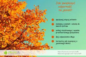 Witaminy na jesień - Spirulina