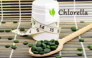 Chlorella na poprawę trawienia