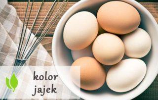 Czy kolor jajek ma znaczenie?