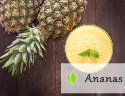 Ananas – co warto o nim wiedzieć?