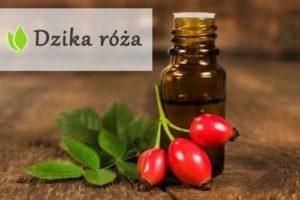 Dzika róża - naturalne bogactwo witamin i minerałów