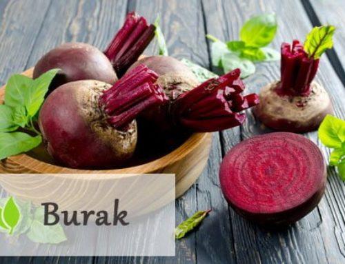 Burak – jak działa i co w sobie kryje?