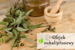 Olejek eukaliptusowy - korzyści zdrowotne i skutki uboczne