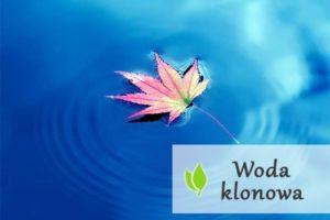 Woda klonowa - właściwości i wpływ na zdrowie