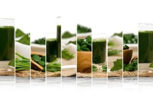 Algi Spirulina kategoria