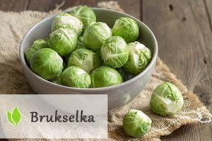 Brukselka - wartości odżywcze i właściwości