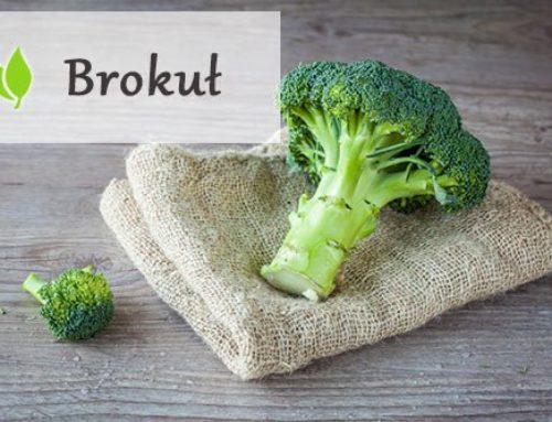 Brokuł – skąd w nim taka moc?