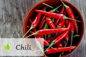 Chili - właściwości i zastosowanie