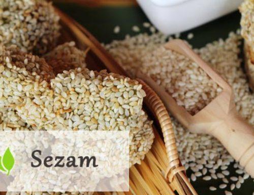 Sezam – właściwości i zastosowanie
