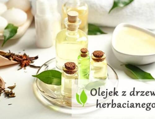 Olejek z drzewa herbacianego – właściwości zdrowotne