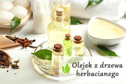 Olejek z drzewa herbacianego - właściwości zdrowotne