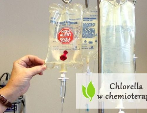 Chlorella w chemioterapii