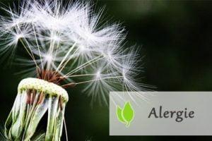 Alergie - zwalcz je odpowiednią dietą