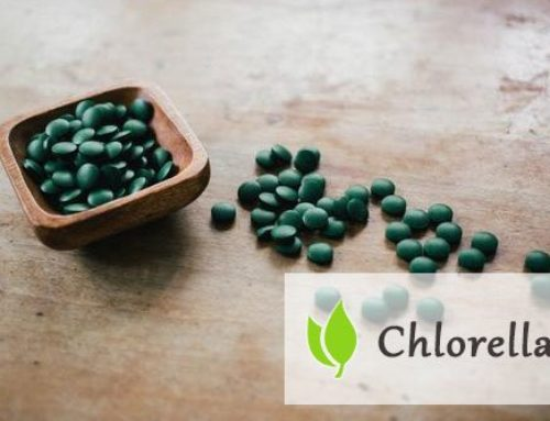 Chlorella – tabletki na oczyszczenie organizmu