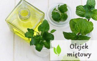 Olejek miętowy - właściwości i zastosowanie