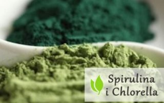 Spirulina i Chlorella z rozerwaną ścianą komórkową