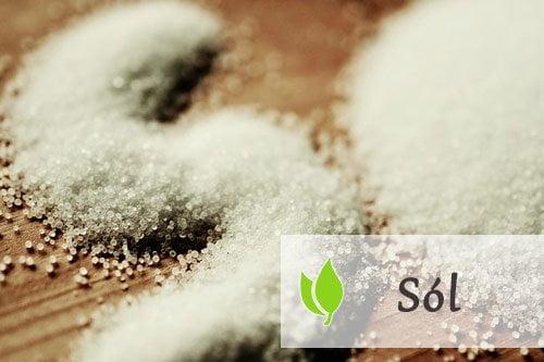 Sól - wpływ na organizm człowieka
