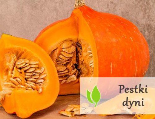 Pestki dyni – wartości odżywcze