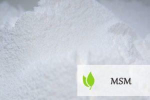 MSM - charakterystyka i zastosowanie
