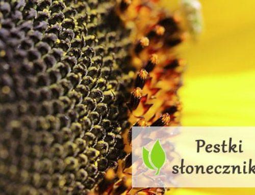 Pestki słonecznika – wartości odżywcze
