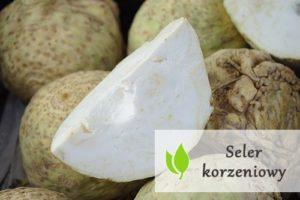 Seler korzeniowy - właściwości odżywcze