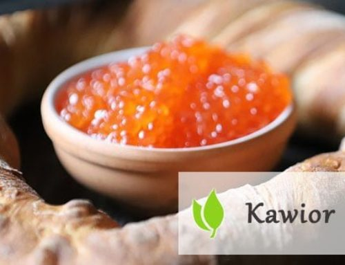 Kawior – ekskluzywny owoc morza