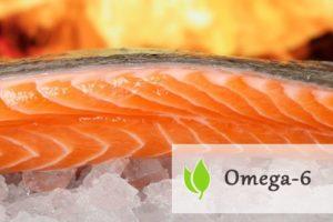 Kwasy tłuszczowe omega-6
