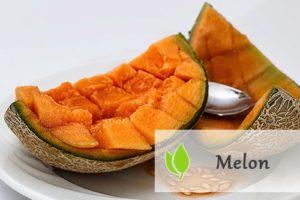 Melon - właściwości i zastosowanie