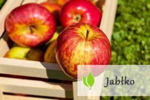 Jabłko - właściwości i zastosowanie