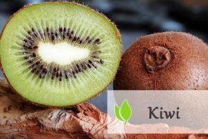 Kiwi - jakie właściwości wykazuje ten owoc?