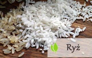 Ryż - właściwości i rodzaje