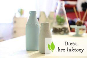 Dieta bez laktozy - jakie produkty jej nie posiadają?