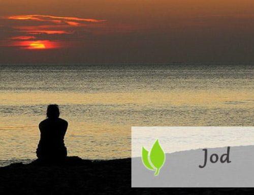 Jod – właściwości, objawy nadmiaru i niedoboru