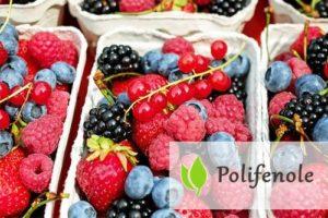 Polifenole - czym są i jaką rolę pełnią?
