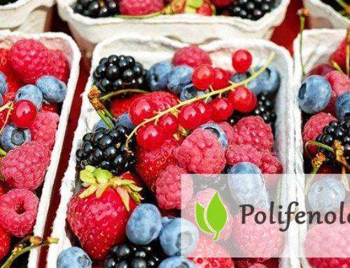 Polifenole – czym są i jaką rolę pełnią?