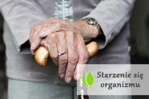 Proces starzenia się organizmu