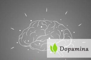 Dopamina - czym jest i jak działa?
